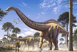 A smaller supersaurus
