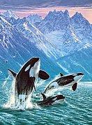 Alaskan Air