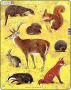 Complete - Wild Animals