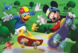 Mickey on the  skateboard