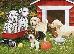 Puppy Playmates