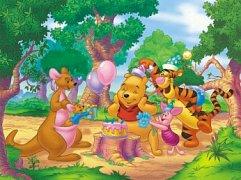 Winnie the Pooh Celebrates His Birthday