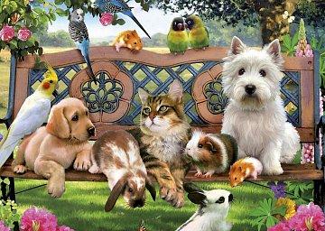 Animal Friends - 1
