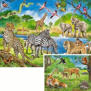 Animals - 1