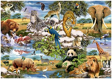 Animals of the World - 1