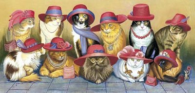 Cats and the hats