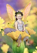 Darling Dandelion