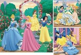 Dreaming Princesses