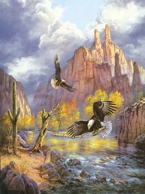Eagles in The Mountains
