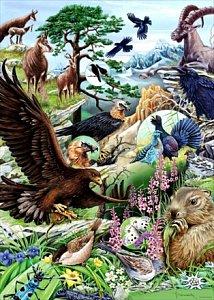 Flora and Fauna - 1