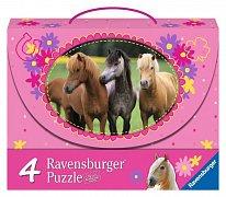 Horses 4 in 1