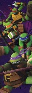 Ninja Turtles - 1