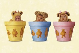 Teddies in Flowerpots