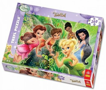 Tinker Bell - small group - 1
