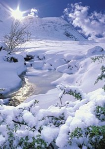Winter landscape - 1