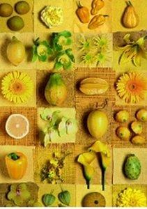 Yummy Yellow - 1